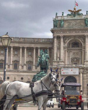 City tour with ? Carriage (Fiaker) or ECO- friendly E-Car. Write a comment ...