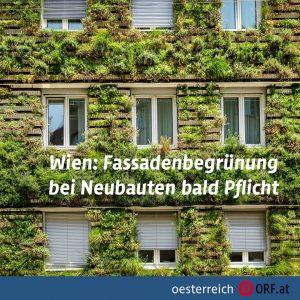 In Wien wird es in Zukunft mehr grüne Hausfassaden geben. Die Stadt kann ...