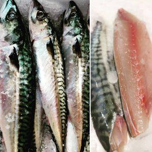 #makrelen gehören zu unseren absoluten Lieblingsfischen. Sie müssen perfekt frisch sein, damit sie genau richtig schmecken. Das...