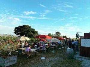 Enjoying the sunny side of life! ☀️ _____________________________________________ #Wien #HansundFritzamSteinberg #Steinberg #sunnyside #FritzWieninger #JuanAmador HANS & FRITZ...
