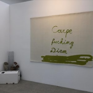 #carpediem carpet in fake empty art fair booth by @verenadengler @viennasecession
