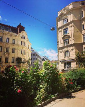😍#greenvienna 🌿🌸🍀 #strollingaround #mariahilf #summerinvienna #july2020 #juli2020 #sommerinwien #wien🇦🇹 #wienliebe #wienstagram #meinwien #vienna🇦🇹 #viennalove #myvienna #igerswien #igersvienna...