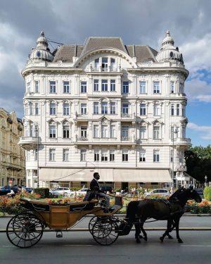 Wiener Wesen #wien#vienna#austria #innerestadt#cafeprückel #postcardfromvienna #accidentallywesanderson #fiaker#fiakerfahrt#coach #streetsofvienna#unserwien #igersviennaclassics #stadtwien#vienna_austria #igersvienna#igersaustria #schöneswien#wienlove #viennagoforit#visitaustria ...