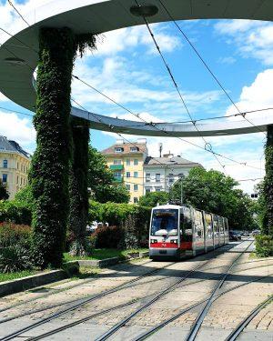 Hier sind wir am Gaußplatz in 1020! Wir finden, Grünflächen, Bäume und Pflanzen verschönern das Stadtbild um...