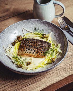 Unser neues Fischgericht: Seeforelle, Karfiol & Kohlrabisalat . 📸@echterhanschitz . #ottobauer #ottobauergasse #seeforelle #viennarestaurant #foodiliciousvienna #wheretoeatinvienna #foodievienna...