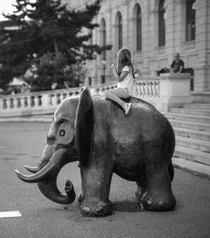 Baby Elefant... (Baby Mammut 😂) NhM Naturhistorisches Museum Wien