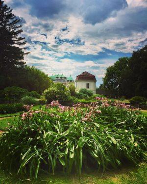 😍#summerinvienna 🌿🌸🍀 #strollingaround #botanischergartenwien #schlossbelvedere #10000schritte #keepyourdistance #staysafe #lilien #lilies #wien🇦🇹 #wienliebe #wienstagram #meinwien #vienna🇦🇹 #viennalove #myvienna...