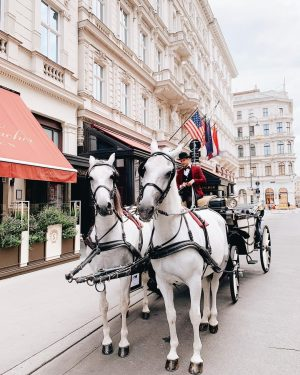 Together with @ridingdinneraustria we take you through the city in an elegant horse carriage to discover Vienna's...