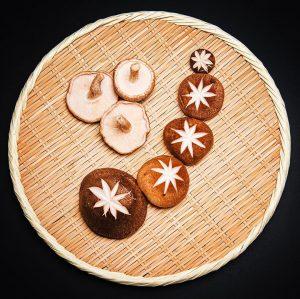 🍂Herbstzeit ist 🍄 Zeit🍂 Pilze wie der Shiitake, Enoki, Shimeji und Nameko sind die Superfoods der japanischen...