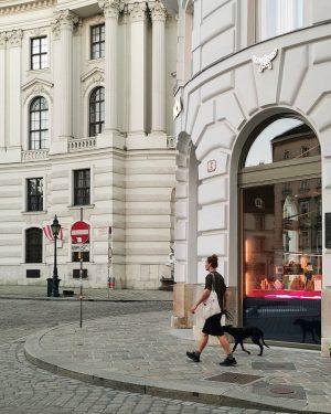 Zweibeiner mit Vierbeiner im Ersten #wien#vienna#austria #innerestadt#michaelerplatz #hofburgwien#hofburgpalace #streetsofvienna#meinwien #peopleofvienna#people #peoplefoto#wiennurduallein #wienerecken#wieneralltag #wienmalanders#wienliebe ...