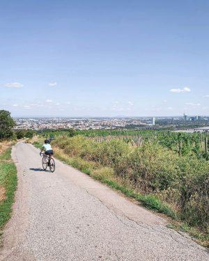 Wer fleißig am Nussberg sportelt, wird mit diesem fantastischen Ausblick über Wien belohnt. 🚵😃🏙 @danielawiebogen hat diesen...