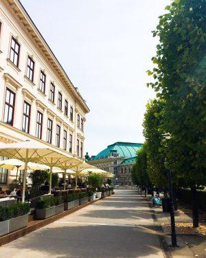 #wien #vienna #austria #albertina #museum #restaurant #bar #city #citylife #mycity #relax #history #fun ...