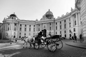 Great to find the beautiful horse carriages (in Vienna called 'fiaker') cruising next to the Hofburg Palace....