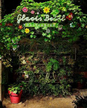 Spätblüher #wien#vienna#neubau #glacisbeisl#nachtsinderstadt #wienamabend#meinwien #wienerinstitutionen #schöneswien#wiengehtaus #stadtwien#igersvienna #igersviennaclassics #igersaustria#seeninwien #streetsofvienna#typography #typolovers#wienmalanders #cernakgreenherself #visitvienna#nightlife #leafs#leaflove #lightanddark#lightlove
