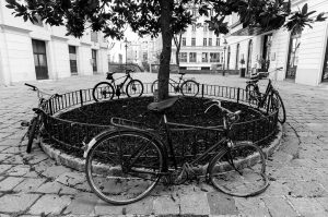 At the moment again in Vienna even bicycles do respect physical distancing. Picture ...