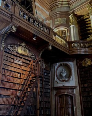 This has to be one of the most beautiful and aesthetic libraries in the World!! 🥺It was...