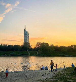 Schwanengesang #schwan #ente #milleniumtower #neuedonau #sundown #summer #sun #sonne #vienna #igersvienna #wien #swim #duck #mycity #urban #danube...