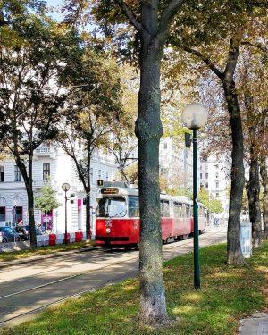 Good morning Vienna 🌻☀️. It's a beautiful day. #vienna #austria🇦🇹 #straßenbahn #street #viennabim ...
