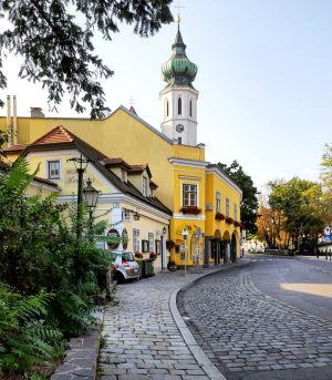Austria 🇦🇹 Vienna 1190 Döbling Grinzing * #austria #österreich #австрия #visitaustria #vienna #wien #вена #viennanow #viennagoforit #visit_vienna...