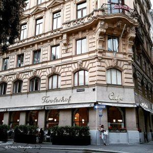 Cafe Tirolerhof オペラ座近くの老舗カフェ もう何年もお茶してませんが、ここも久しぶりに行きたいカフェ☕ Another very tradional Viennese Cafe close to the Opera☕ Vienna, Austria #vienna🇦🇹 #viennacoffee...