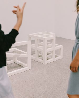 Pluralistic diversity has been governing the methodical understanding of Pop Art, Minimal Art ...