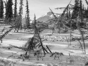 MEMORIES OF THE FUTURE 🌲❄ Die Landschaftsaufnahmen, für die der Künstler @benedikt_partenheimer quer durch Alaska fuhr, zeigen...
