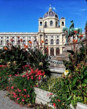 NHM (natural history museum Vienna) Part 1 . . . #naturhistorischesmuseum #nhmwien #beautifulplaces #museumsoftheworld #vienna #citykillerz #igersvienna...