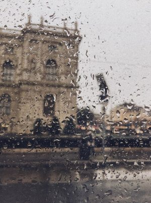 cats and dogs // it is pouring and it makes me feel at ease.