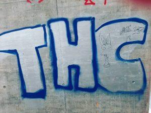 #🤣 #graffitiart #wien #donaukanalstreetart #kaiserebersdorf #politics #politik #thc