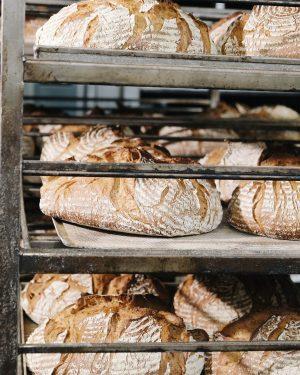 Ab heue weht der Duft nach phrischem Bio Joseph Brot auch endlich durch Währing.