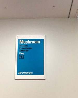 Medical prescription to keep the soul connected to the body 🍄 #modernarts #prescriptionfortheheart #psychedelicartist #exhibitions Albertina Modern
