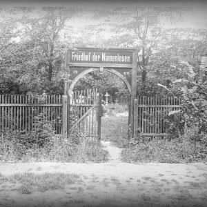 """Den """"Friedhof der Namenlosen"""" in Wien kennen viele spätestens seit dem Film """"Before Sunrise"""". Unsere KollegInnen vom..."""