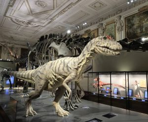 Visit the NHM Vienna today! We are open until 6.30 p.m. today and ...
