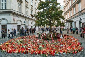 AUSTRIA / Vienna / 06.11.2020 / © Gregor Kallina #viennanow #viennagoforit #vienna_city #welovevienna ...