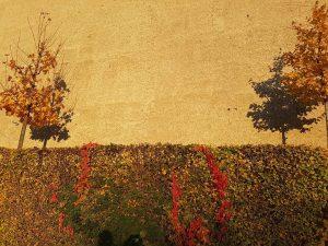 Hier malen der Herbst & das Licht * Painted by autumn & light * Peinture faite par...