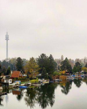 🇦🇹 Alte Donau ——————————————————————————— ~~~~~~~~~~~~~~~ 09|11|2020 ~~~~~~~~~~~~~~ ——————————————————————————— #vienna #viennacity #viennanow #viennaaustria #viennagram ...