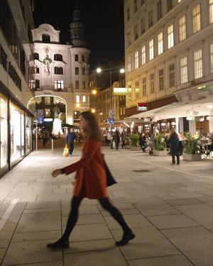 WienGo ✅ 2 November 2020 6:13 PM / Lugeck _______________ #wien #vienna #schleichdiduoaschloch ...