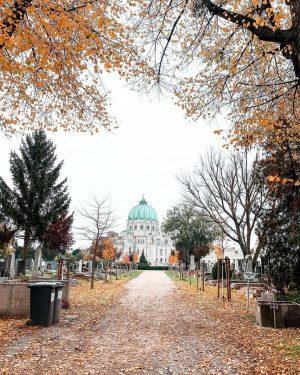 ... never really gone. 🕯🤍 #throwback #zentralfriedhof #allerheiligen #allerseelen Spaziergang mit @jakob_pinter & @yerahobbitrebecca Zentralfriedhof 2.Tor