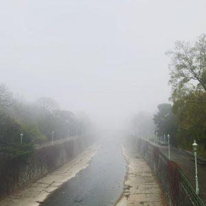 #foggymorning #foggyweather #foginvienna #vienna #morning