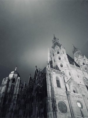 #stephansdom #vienna #vienna_city #ersterbezirk #stephansplatz #foggyday #nebelstimmung #nebel #novemberdays #moody #moodygrams #autumnvibes #architecture #architecturephotography #light #shadow #darkaesthetic...