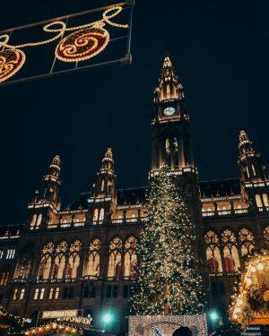 Vibes ⚪️ ...un albero di Natale all'altezza dei miei sogni 🎄. Oramai il feed è un misto...