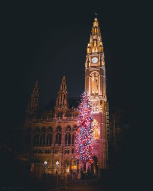 🎄The Christmas Tree in front of the City Hall... looks a little bit tiny, or? But still...