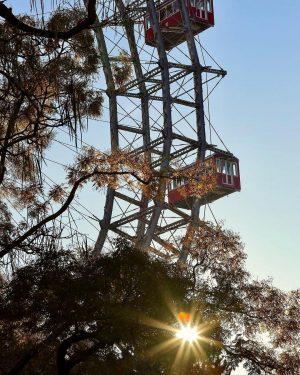 A Light Left On 💡🎡 #praterwien #riesenrad #giantferriswheel #🎡 #morninglight #morningsun #morgenstimmung #sunstar #sonnenstern #viennawaitsforyou #viennatouristboard #wienliebe...