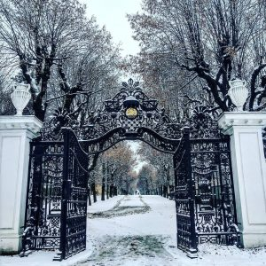 Enchanted forest 😍 #wien #schonnbrunn #winter #snow #firstsnow #vienna Schloss Schönbrunn