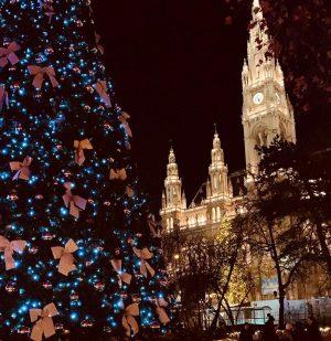 Rathaus 2019 / #rathausplatzwien #christmastime #newyear #beatifulvienna Rathaus