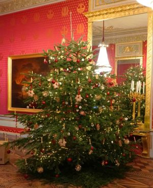 Happy Christmas Day, everyone! 🎄 Did you know that the Christmas tree as we know it today...