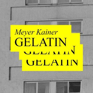 Works by Gelatin will be presented by @meyerkainer at Interconti Wien. #meyerkainer #gelatin #intercontiwien InterContinental Vienna