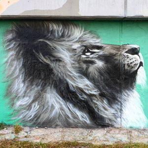 #streetartvienna #streetart #art #donauinsel #viennastreetart #vienna #viennacity #wien #city #citytrip #citytravel #cityphoto #citybestpic #citybestview #citysightseeing #cityview #cityphotographer...
