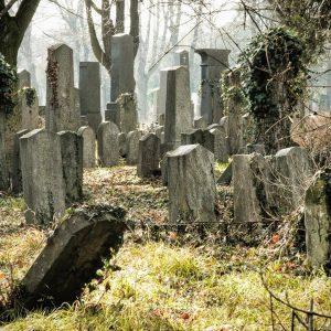 Juedischer Friedhof Zentralfriedhof Wien #zentralfriedhofwien #graeber #alterfriedhof #juedischerfriedhof #abschied #trauer Wien, Vienna, Austria