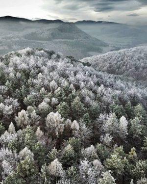 ❄️Winterwonderland❄️ #derwienerwald @alex.ander.stei.ner 📸 #wienerwald #visitniederösterreich #niederösterreich #winter #winterinaustria #winterwonderland Wienerwald